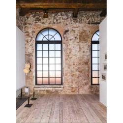 Ocelové tovární okno obloukové